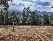 Lot355 The Cove Phase 3 @ 1300, Blairsville image