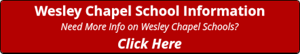 Wesley Chapel School Information