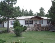 26524 Jack Pine Road, Custer image