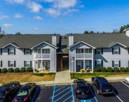 206 Pelham Square Way, Greer image
