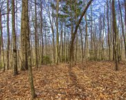 Lot #14 Rhododendron  Drive, Saluda image