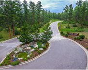 1687 Wild Timber Court, Franktown image