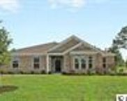 1113 Spoonbill Drive, Conway image