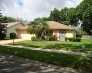 1288 Gillespie Drive, Palm Harbor image