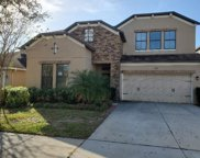 2517 Cross More Street, Valrico image