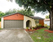 833 Green Valley Road, Palm Harbor image