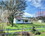 32872 LYNX HOLLOW  RD, Creswell image