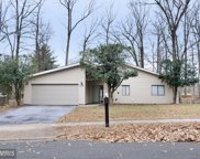 12659 WILLOW SPRING COURT, Herndon image