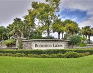11133 Peace Lilly WAY, Fort Myers image