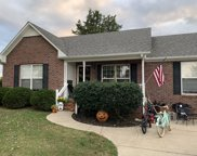 2833 Faith Ln, Spring Hill image