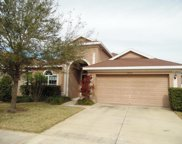 12730 Whitney Meadow Way, Riverview image