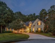 2576 HEATHER OAKS CT, Orange Park image
