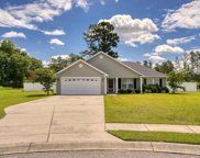 404 Willie Joes Ct., Conway image