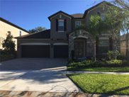 9497 Royal Estates Boulevard, Orlando image