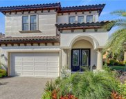 1461 Marinella Drive, Palm Harbor image
