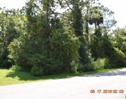 36 Round Thorn Drive, Palm Coast image