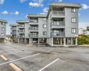 6001 Ocean Blvd. N Unit 339, North Myrtle Beach image