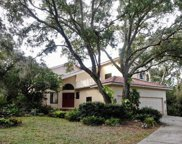 12802 Twin Branch Acres Road, Tampa image