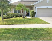 13644 Artesa Bell Drive, Riverview image