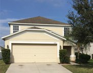 10743 Shady Preserve Drive, Riverview image