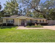 610 Litchfield Way, Orlando image