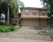 2079 Date Palm Court, Ocoee image