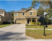 1013 7th Street S, Safety Harbor image