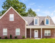 926 Beverly Ct, Spring Hill image