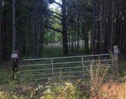 5885 Coleman Lake Road, Mccalla image