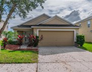 10615 Shady Preserve Drive, Riverview image