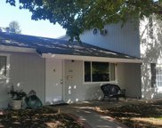 340 Homestead, Red Bluff image