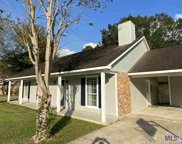27524 Country Dr, Walker image