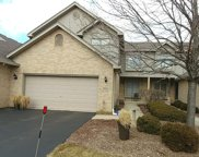 9134 Mansfield Drive, Tinley Park image