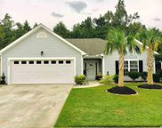 1042 Snowberry Drive, Longs image