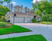 18310 Pleasant Ridge Place, Lutz image