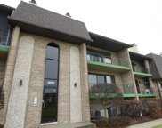 15702 Old Orchard Court Unit 2S, Orland Park image