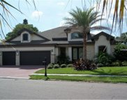 905 Palmetto Drive, Safety Harbor image