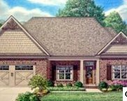 Lot 95 Rippling Waters Cr, Sevierville image