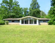 69411 S River Road, White Pigeon image