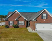 3008 Shallow Pond Dr., Conway image