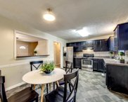 1141 Bluewillow Ct, Antioch image