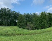 Wild Meadow Lane West Road, Charlevoix image