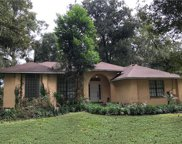 10082 Lake Meadow Road, Apopka image