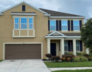 11534 Tangle Branch Lane, Gibsonton image