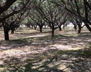 3389 S Cherry, Fresno image