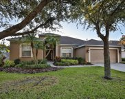 7507 Regents Garden Way, Apollo Beach image