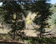 11946 Silver Bear Road, Conifer image