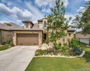 28706 Bluebottle, San Antonio image
