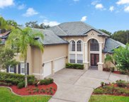 14456 Dover Forest Drive, Orlando image
