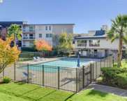 950 Shorepoint Ct Unit 120, Alameda image